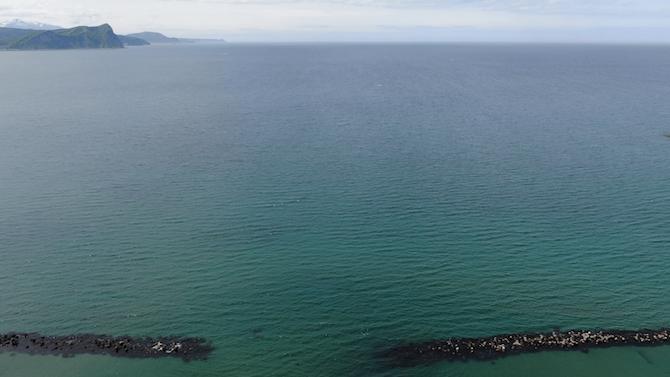 小樽の海と水平線