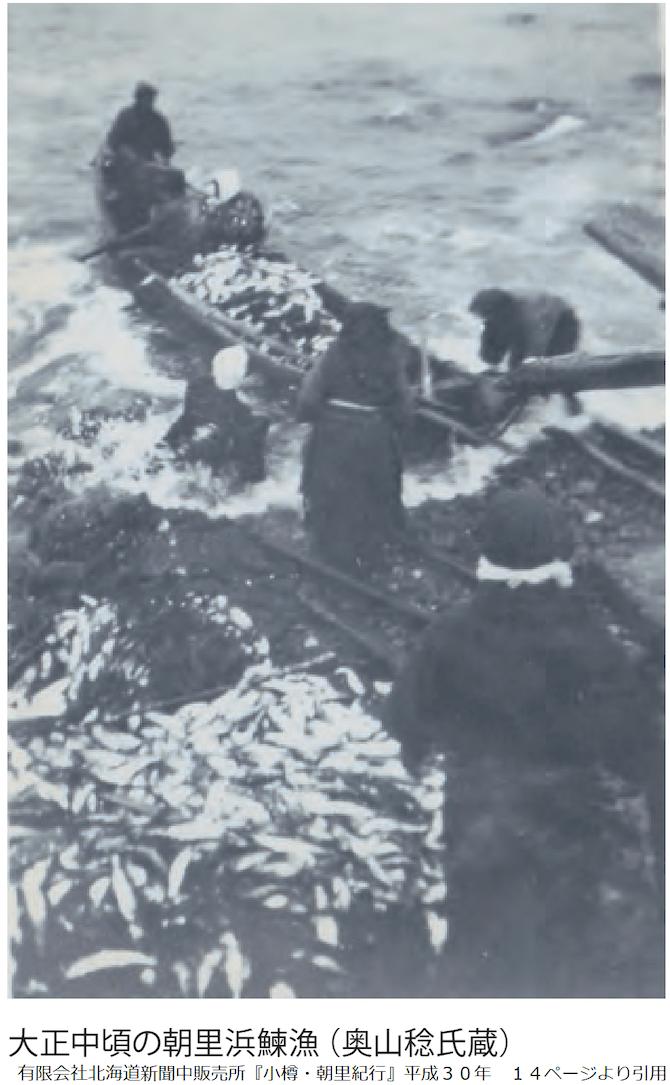朝里浜の鰊漁